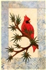 Winter Rest Cardinal Applique Pattern