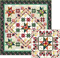 Color Love BOM Quilt Pattern Set