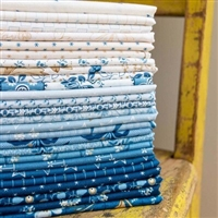 Perfect Union Half Yard Bundle by Edyta Sitar