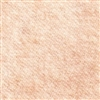 WOOL FABRIC: BLUSH CHAMPAGNE (READ BELOW)